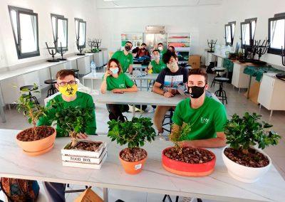 Laboratorio clase bonsáis